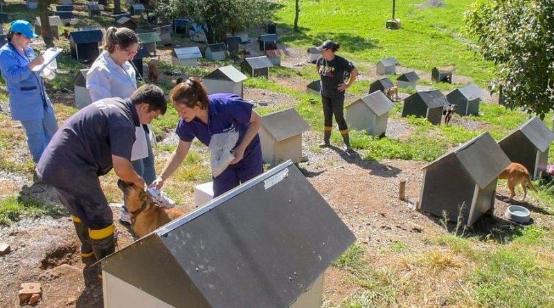 Caxias do Sul quer criar o Parque Municipal de Proteção Animal